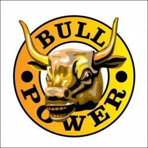6098414-bull-s-power[1]