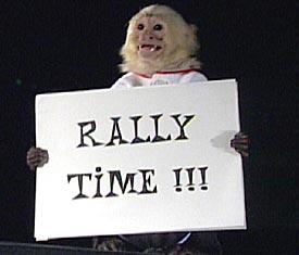 stock-rally-time[1]